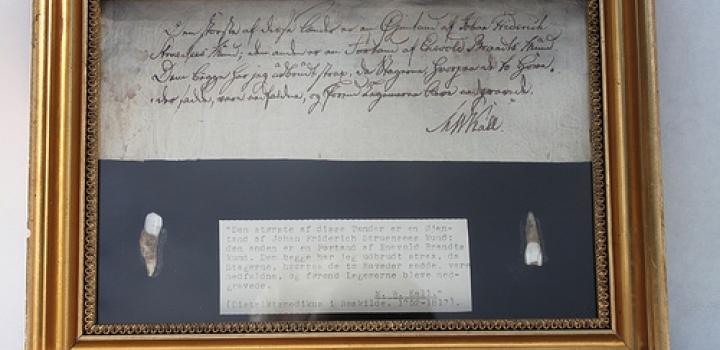 foto fra Medicinsk Museion